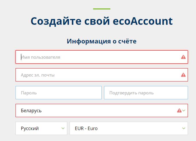 заполнение формы регистрации ecopayz